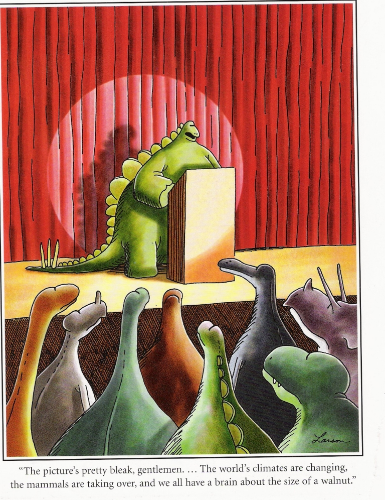 Image result for the far side walnut
